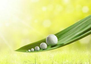 Unternehmen_Nachhaltigkeit_hover